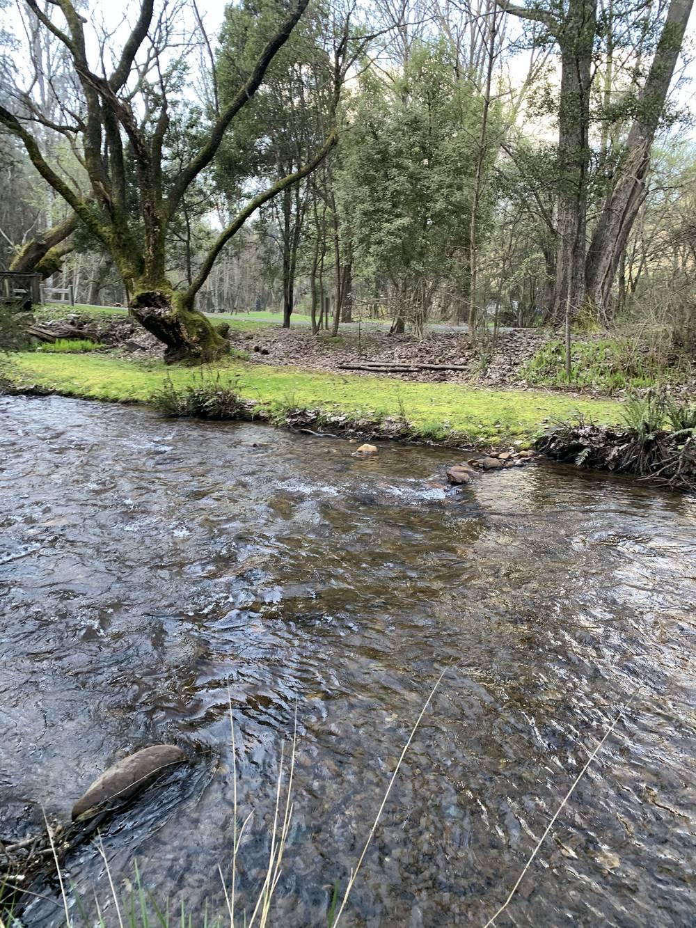 Ovens River Harriteville